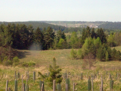 Aukstadvaris regional park forest