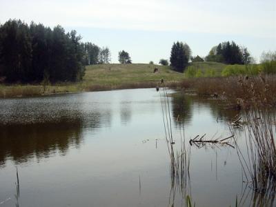 Aukstadvaris regional park and lake